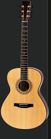 Full view of a C-Model guitar